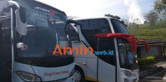 Harga Sewa Bus Pariwisata di Probolinggo Murah Terbaru